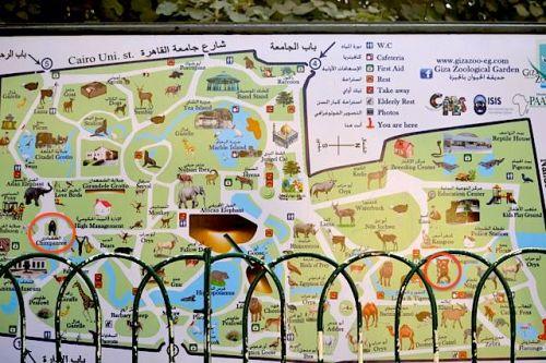 9. Giza Zoo