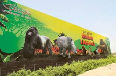 Will the new Dubai Safari Park import illegal great apes?