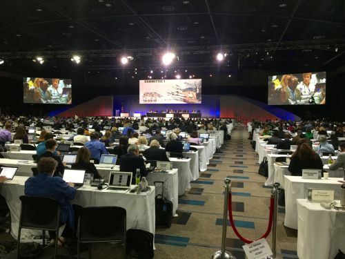 The conference hall was packed for the elephant and rhino proposals