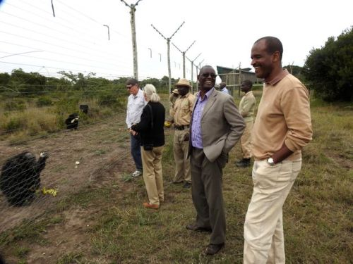 During Jane Goodall's visit to Sweetwaters, Dr. Murithi Mbabu, Deputy Director of the DVS (centre), and Mr. Kitili Mbathi, DG of KWS (on right), saw first-hand what Sweetwaters was. Meeting Jane Goodall and discussing Manno's situation spurred KWS to issue the CITES import permit. (Photo: PEGAS).